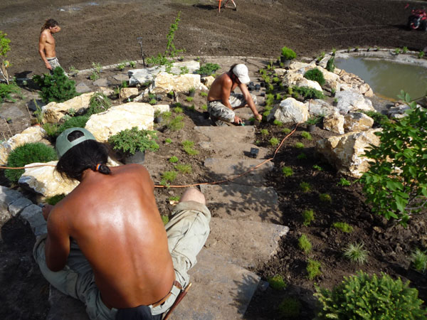 Údržba zahrad a kácení